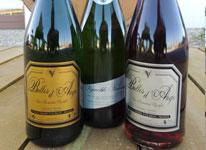 Vins pétillants Vignoble Vincent