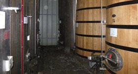cuves de vinification en fût de chêne
