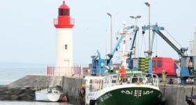 Visite du port de La Cotinière