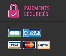 paiements sécurisés : CB paypal...