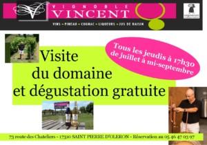 présentation des visites estivales du Vignoble Vincent