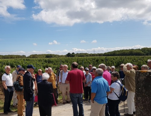 VISITES DU VIGNOBLE VINCENT